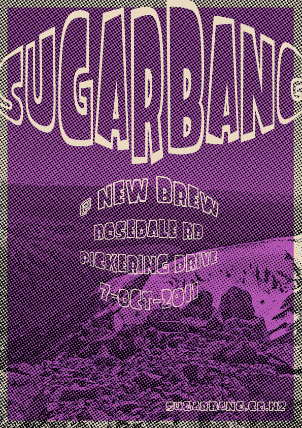 SugarBang Band plays New Brew in Albany